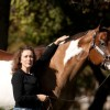 APHA Youth World Expands Opportunities