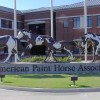 APHA Nominating Committee recommends two for Executive Committee position