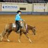 Junior Western Pleasure, Western Riding World Champions crowned