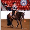 How It's Made Horsemanship: Riding it to win