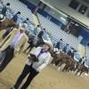 AQHA Novice Championships