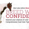 Breed with confidence using APHA Genetic Testing