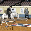 AQHA High-point standings for 2015 are finalized