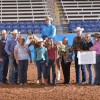 Farnam Select All-Around Crowned at the AQHA Select World Show