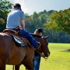 Game Changers: Trainers and horses making dreams come true