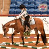 AjPHA Youth World Show premium book now available