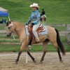 Join NAWD for the inaugural Festival for the Horse