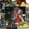 AQHA photo contest deadline is May 26 so submit yours today!