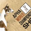 APHA World Championship Show schedule now available