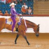 Legendary AQHA show horse Zippo LTD dies at the age of 30 in Texas