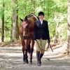 Jackie Pohlman has a passion for Hunter Under Saddle events