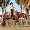 Carrs report passing of AQHA mare Rhapsody In The Rain