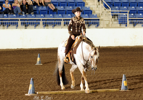 Patterns available for Keystone Classic Appaloosa Show   InStrideEdition