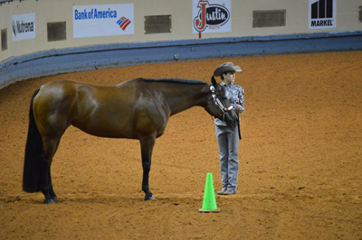 Cydnes Benes prepares for her Showmanship pattern with Rockin Raisinette