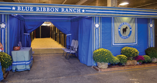 Blue Ribbon Ranch