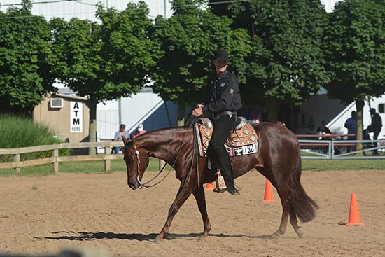 Gil-Western  Riding