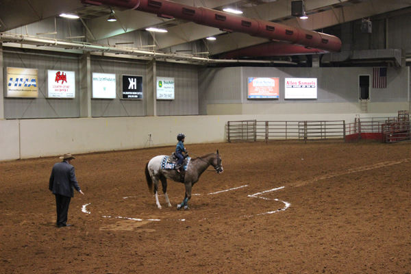Keyhole to Western Pleasure at Bluebonnet Appaloosa Show